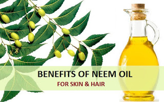 neem oil benefits in hindi