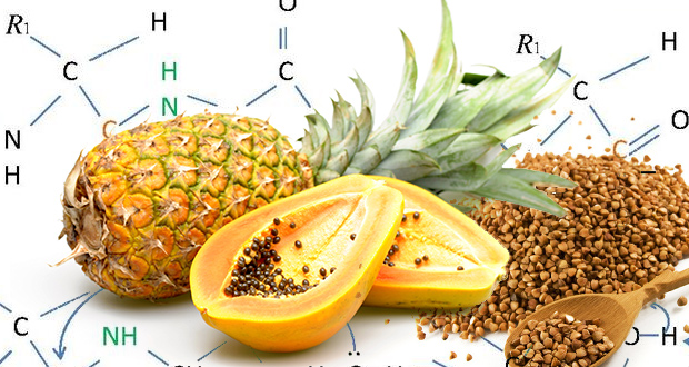 Fighting-Cancer-Proteolytic-Enzymes-FI.jpg